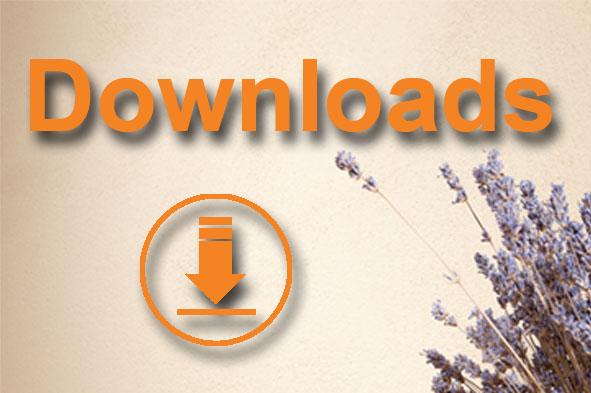 Downloads rund um LEVITA LEHM®